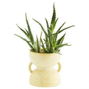 Madam Stoltz Vase zitronengelb mit Pflanze